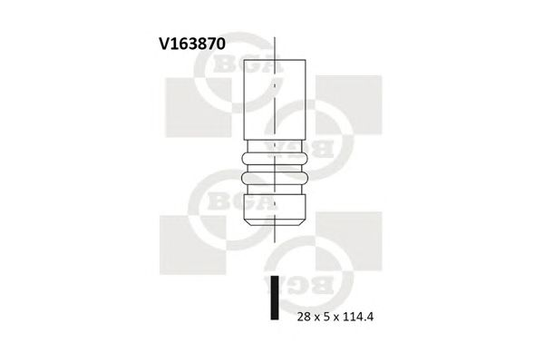 BGA V163870